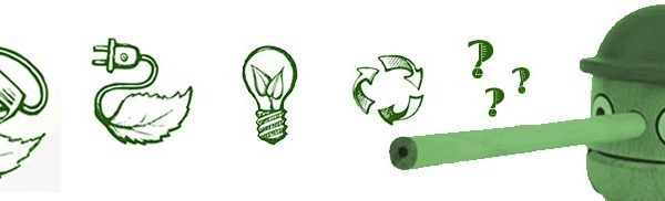 Lies and truths about what is energy efficiency